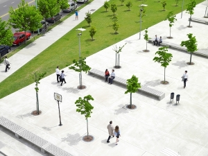 People walking in a park with trees   PwC, Photo_RGB_PC_48164.jpg