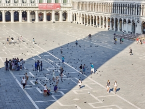 PwC_PC_Italy_Venice_MB_059.jpg People and pigeons in a courtyard